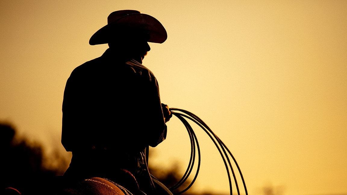Cowboy Operators in the Debt and Insolvency Industry
