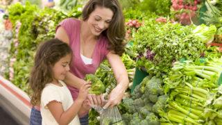 standard of living UK families header